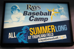 Baseball Camp Sign