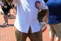 Cubby Bear Mascot