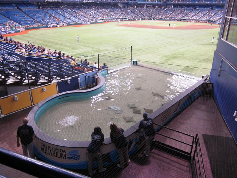 Tampa Bay Rays ballpark