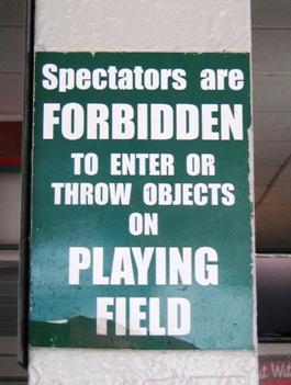 wrigley field bleachers throw back baseball