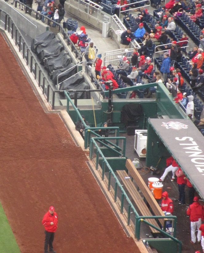 nationals park seating tips dugout seats